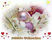 Weisse Weihnachts-Orchideen Grusskarte