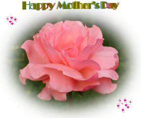 mother s day ecards roses