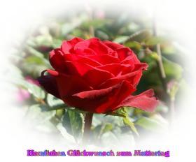 Muttertag's Grusskarte bunte Rosen aprikose, pfirsich, rosa, rot, weiss *Alles Liebe zum Muttertag*