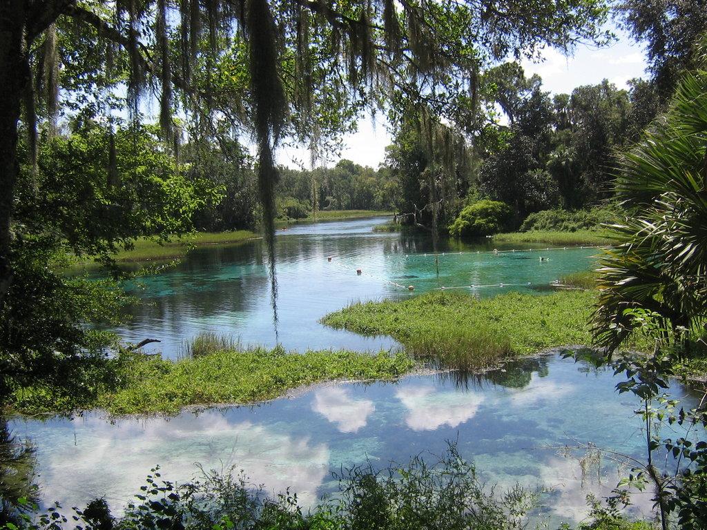 Пейзажи из флориды на твой рабочий