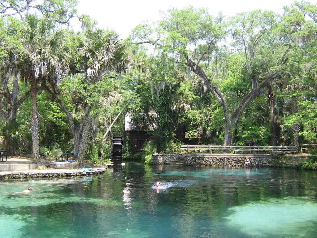 Juniper Spring Natural Swimming Pool
