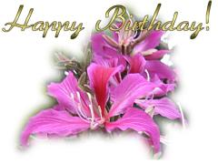 http://www.allabouthappylife.com/greeting_cards/happy_birthday_greeting_cards/thumbs/birthday_ecard_purple_orchid_tree.jpg