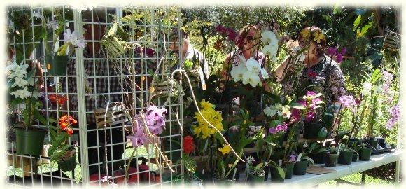 Sunken Gardens - Orchid Festival 2008