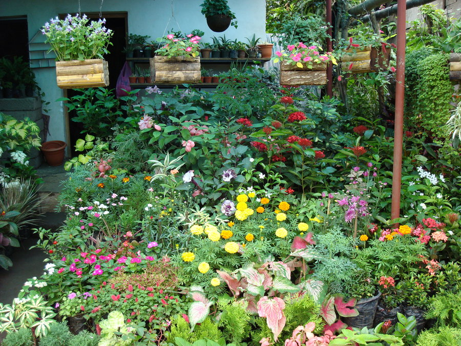 Catarina best viewpoint and garden nursery of Central