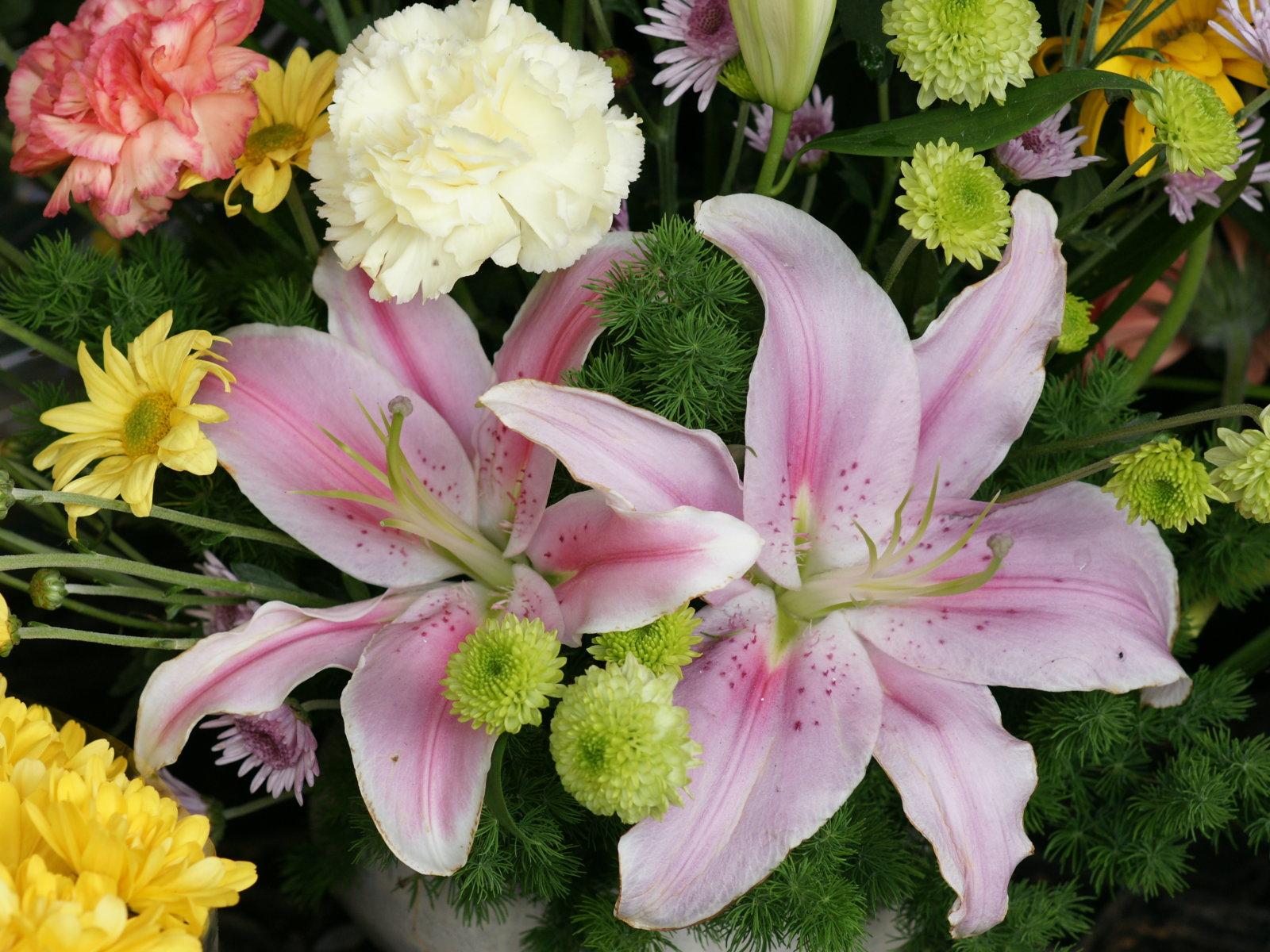 flower wallpaper for women u0026 39 s day