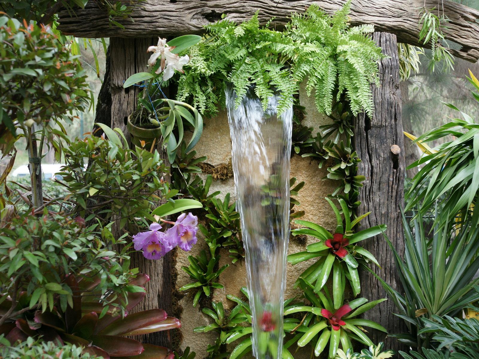 Jardines m s bellos fondos de pantalla for Exotic garden designs