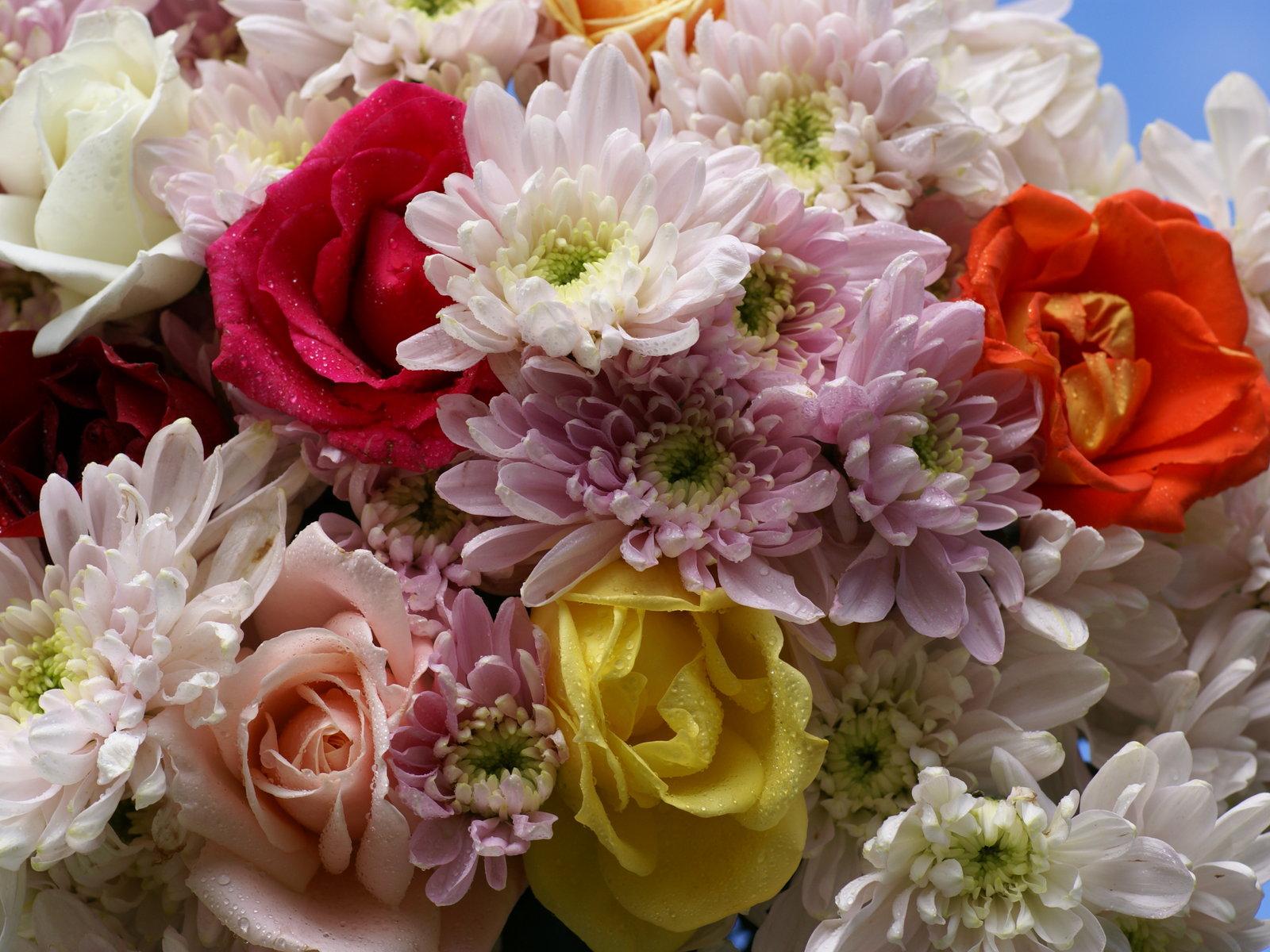 ramo de flores y rosas foto fondo de pantalla
