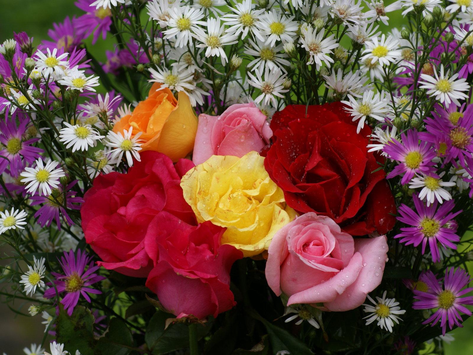 Hermosa leggins de flores y sueter gris 6