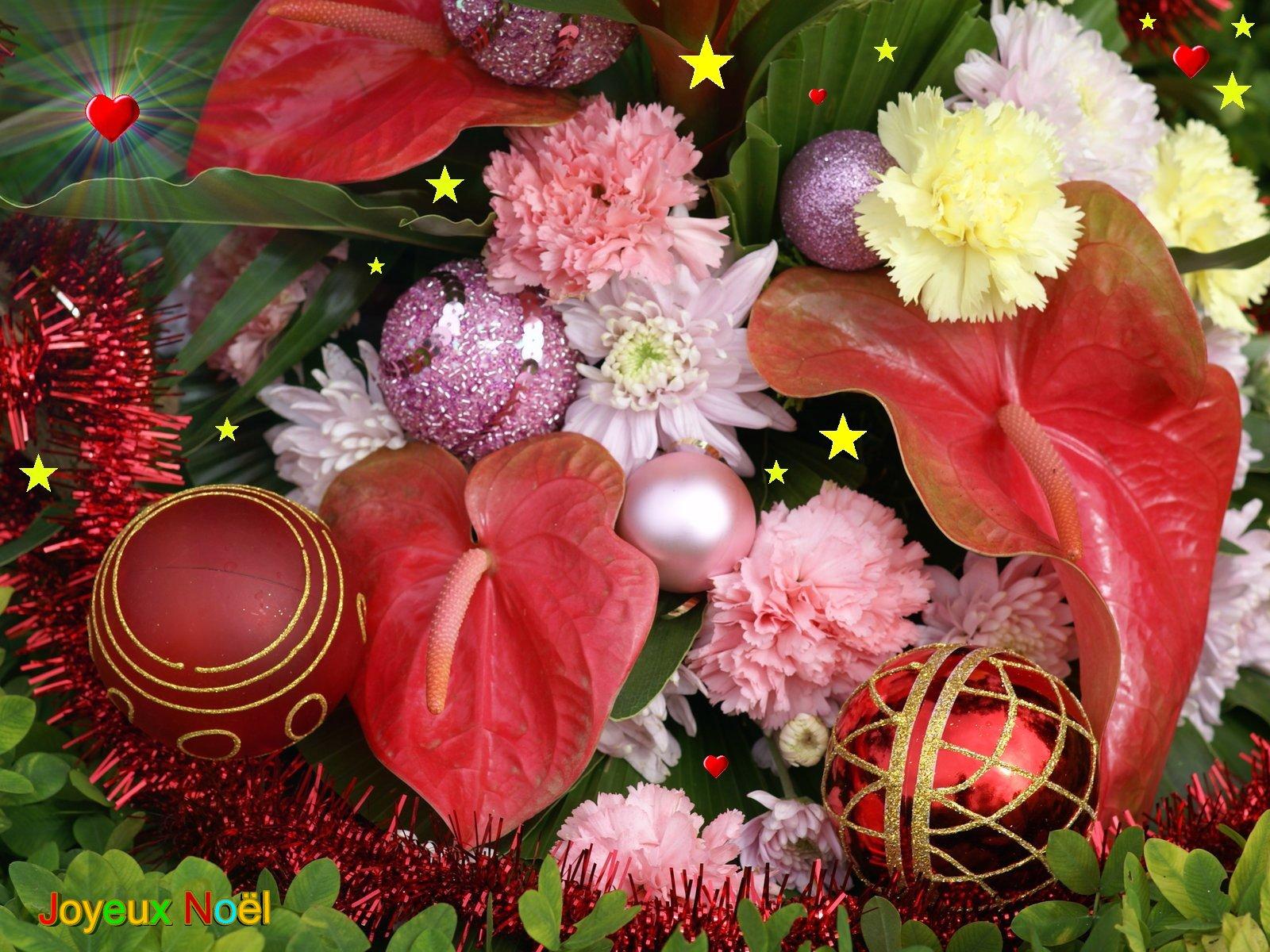 Fleurs joyeux noel for Fond ecran noel