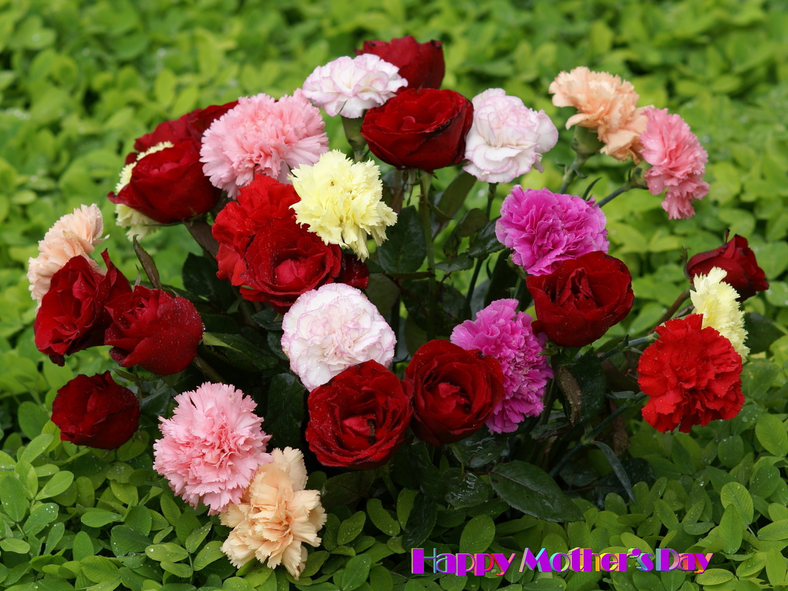 Mothers day wallpaper beautiful flowers for Bouquet de fleurs nature