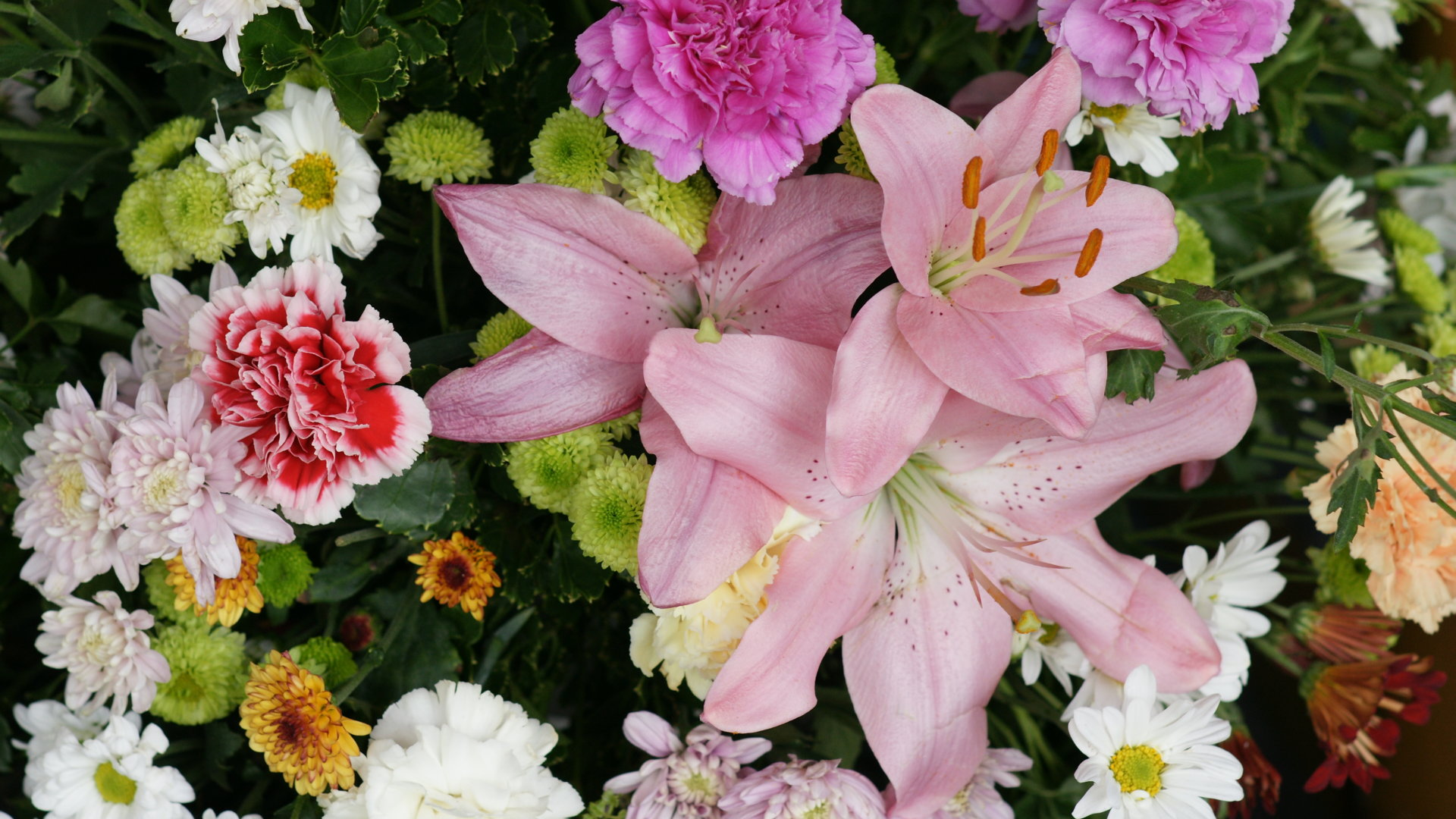 HD Wallpaper Download 2560x1440 Roses Carnations Lilies