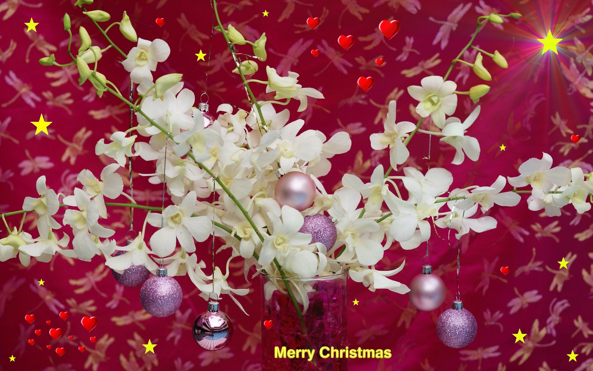 widescreen christmas wallpaper merry christmas orchids