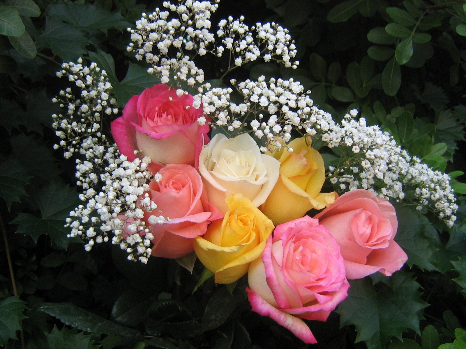 Цветы с доставкой по Москве Prostoroza 85