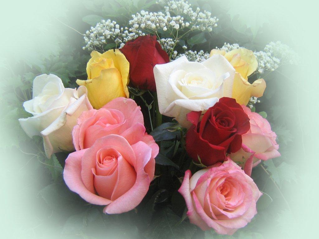 fotos ramos de rosas hermosas
