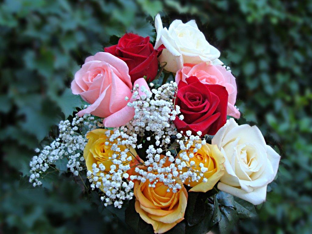 roses_bouquet_dsc00021.jpg