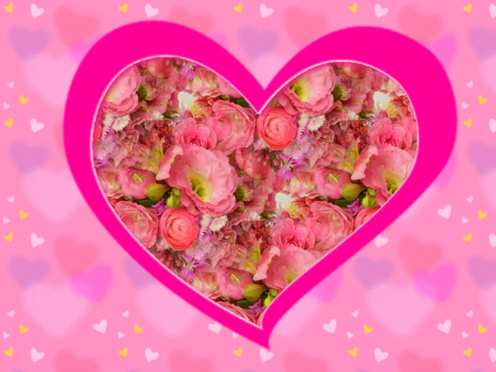 Must see Wallpaper Love Flower - 1600-valentine-pink-floral-wallpaper  Snapshot_18762.jpg