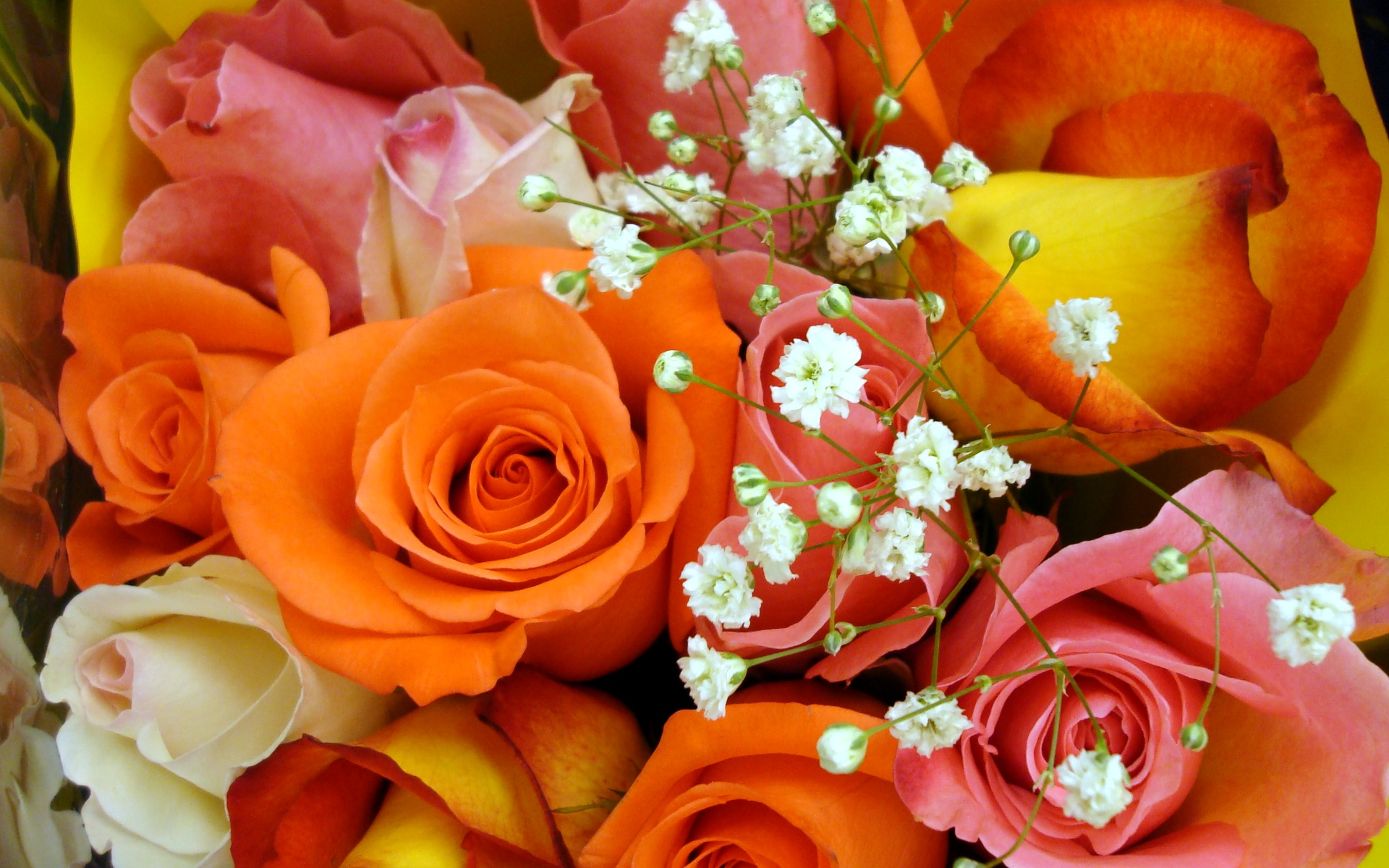 Colorful rose bouquet widescreen wallpapers for Bouquet de fleurs nature