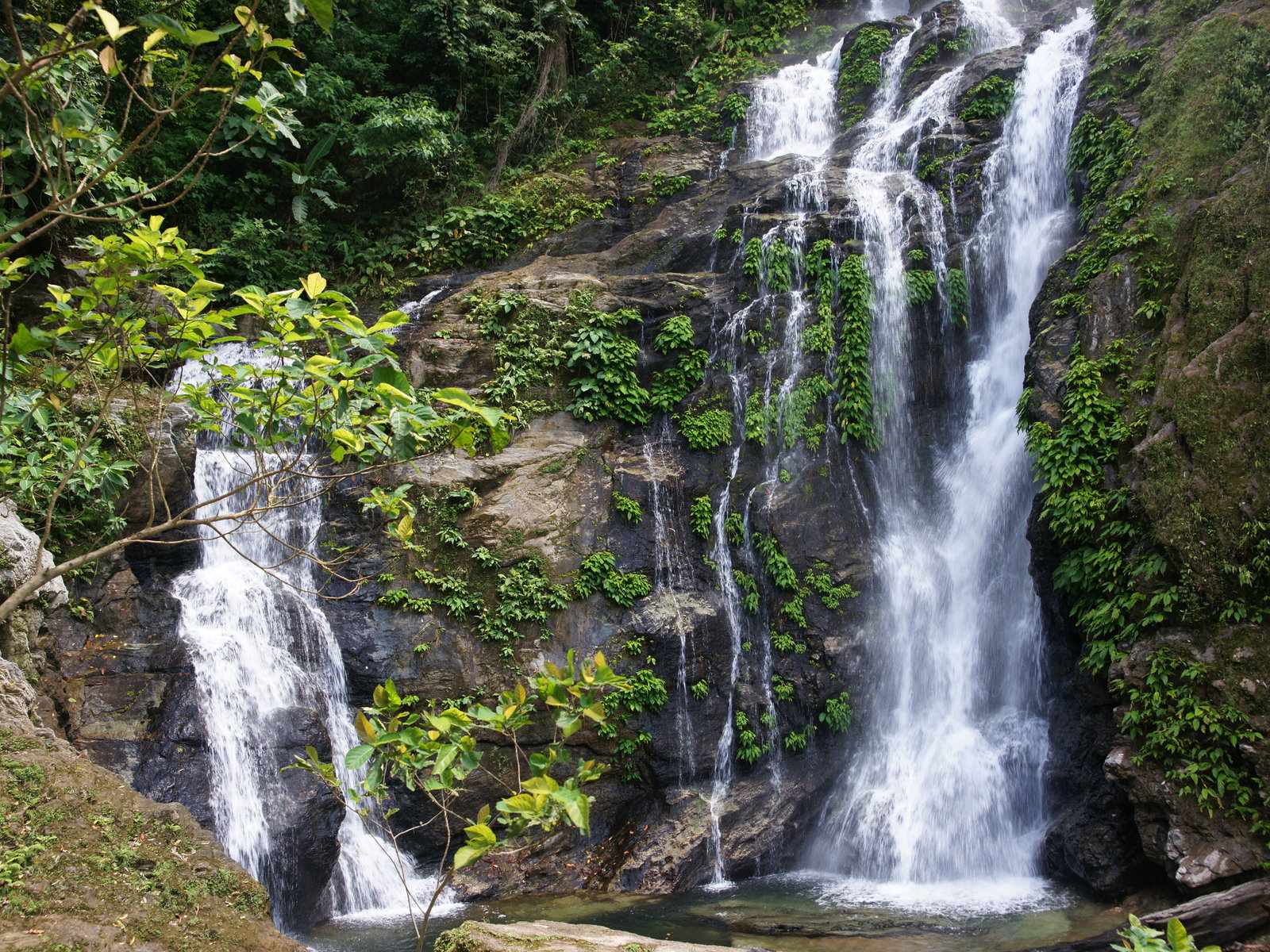 Exotic Waterfall Wallpaper: Jungle Nature Wallpaper